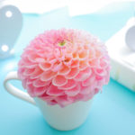 花とマグカップ.jpg
