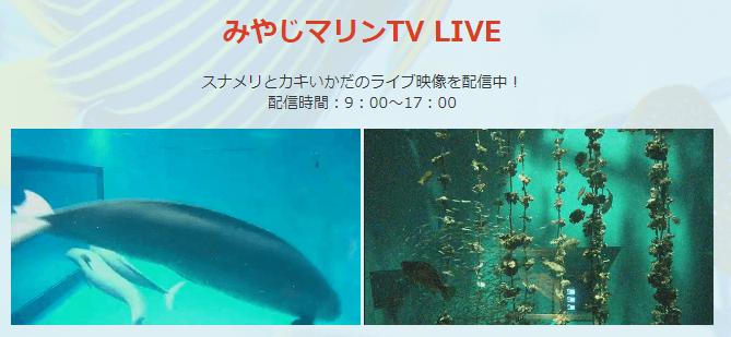 Miyajima-Aquarium.png